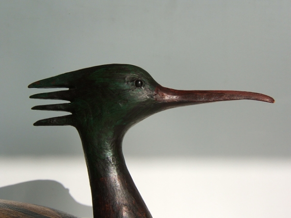 Guy Taplin - Merganser detail